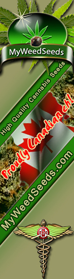 Buy Cannabis Seeds with Bitcoins MyWeedSeeds.com